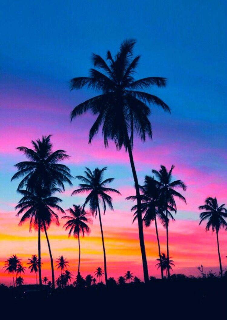 Fed Onto Sunset Sunrise PhotographyAlbum In Photography Category