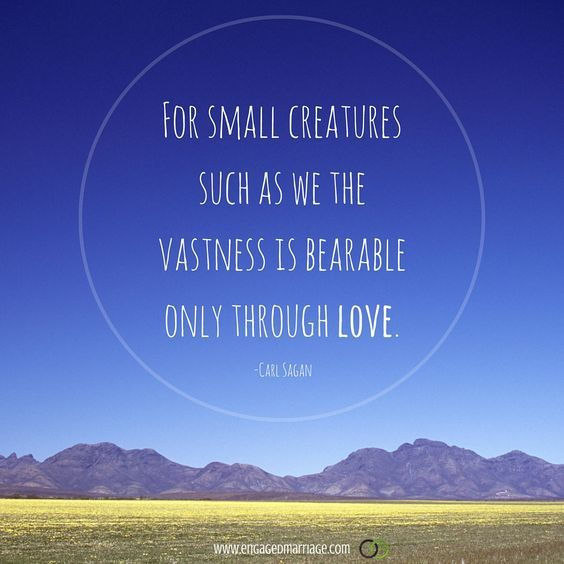 Carl Sagan Love Quote Entrancing For Small Creatures Such As We The Vastness Is Bearable Only