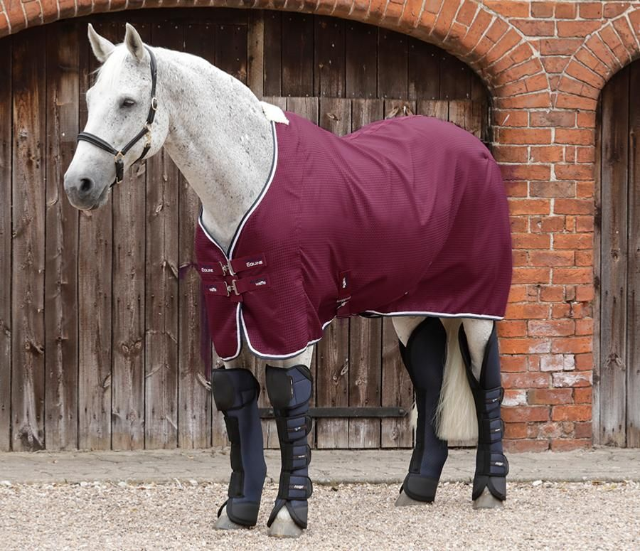Buster Waffle Horse Cooler Rug Dekens Horses Cool Rugs