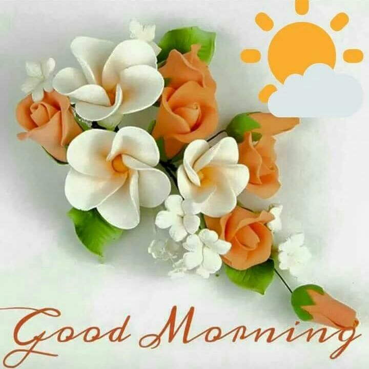 Bonjour, Bonne Journée