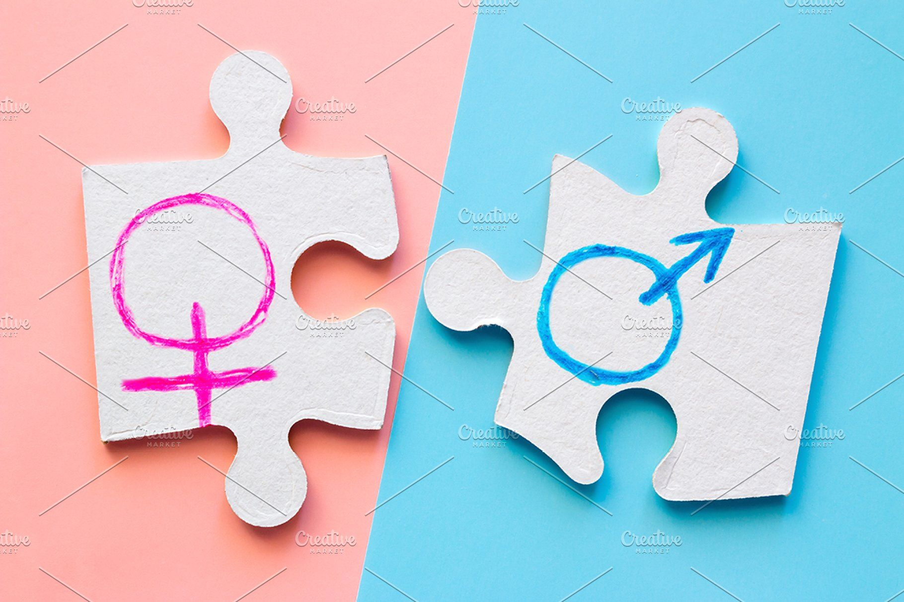 Male And Female Gender Symbols Symbols Book Photography Female Symbol
