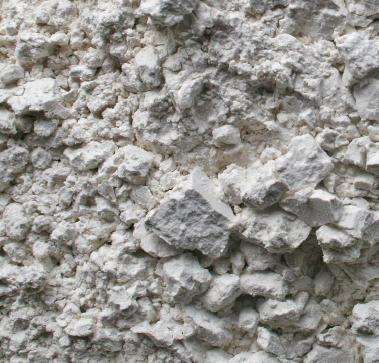 Learn why Diatomaceous Earth is great for hair, skin and