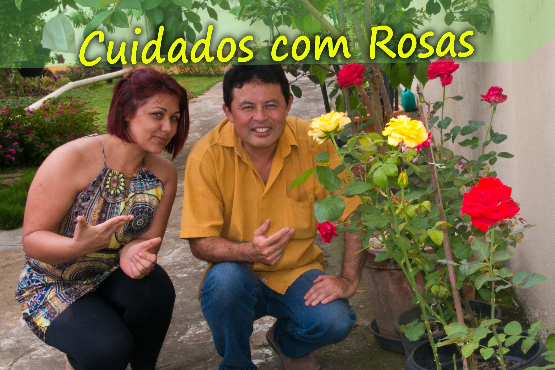 Rosas , dicas e cuidados simples para suas Roseiras, Jardinagem e estilo...