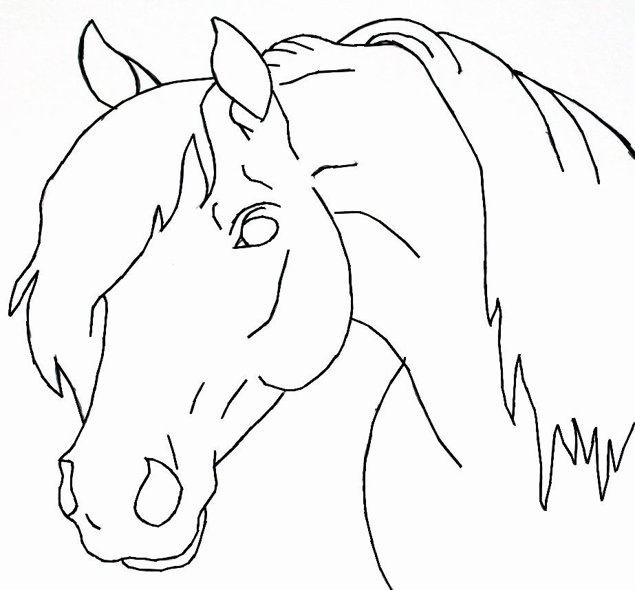 Horse Head Coloring Page Elegant Horse Head Lineart By Bluemoon124 On Deviantart Easy Horse Drawing Horse Drawings Horse Head Drawing