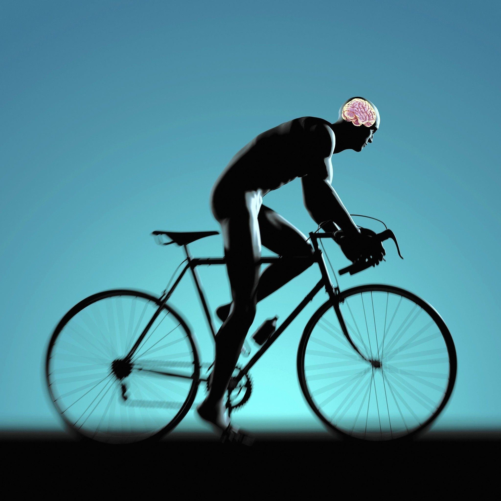 The Best Brain Exercise May Be Physical Exercise Train Your
