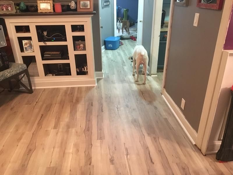 5 3mm Natural Maple Evp Coreluxe Lumber Liquidators Flooring Hardwood Floors Engineered Vinyl Plank
