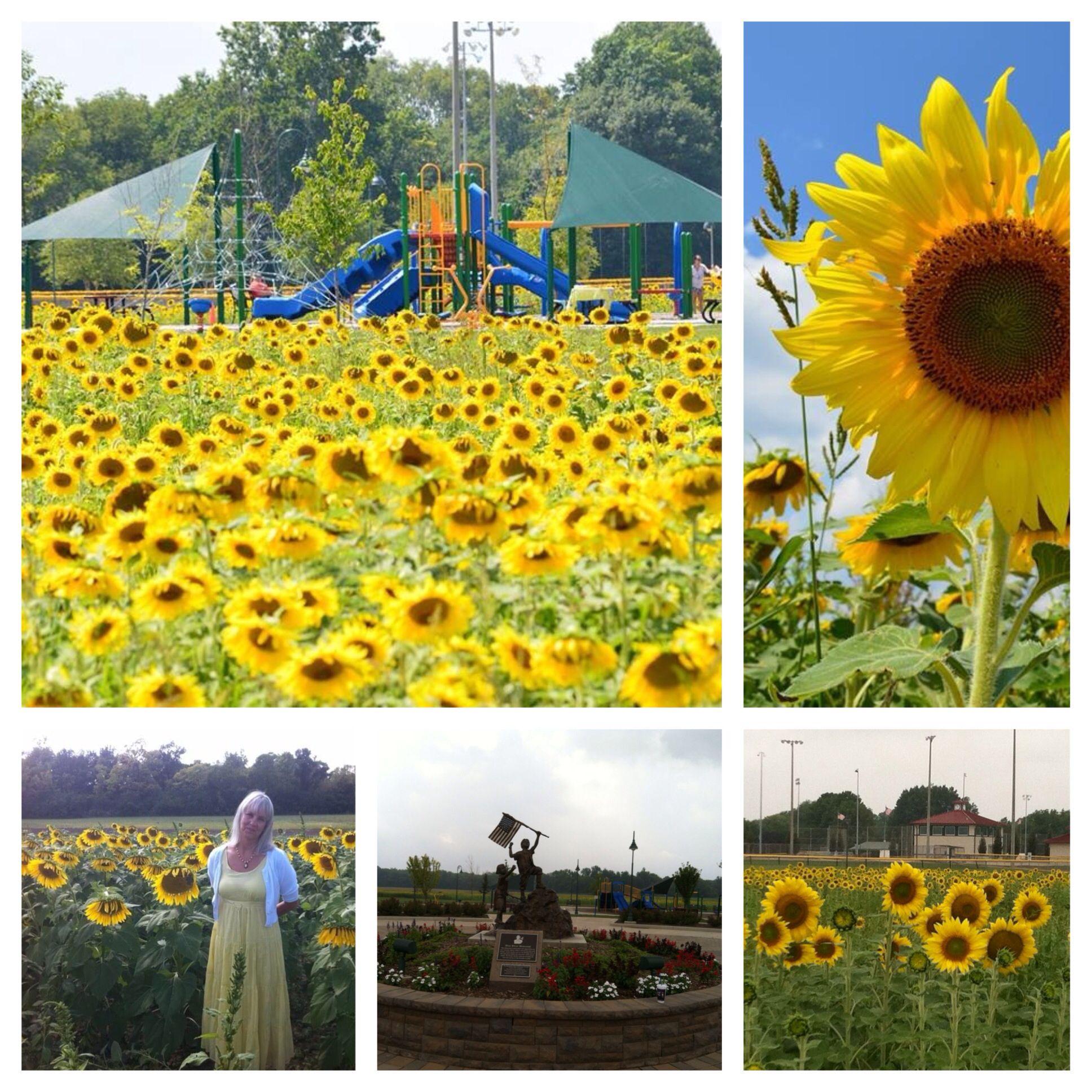 Blue River Memorial Park in Shelbyville