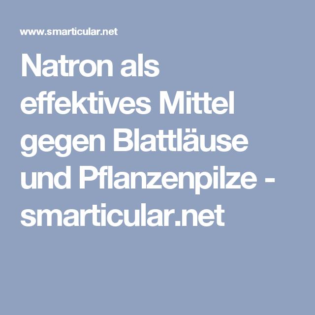 Natron als effektives Mittel gegen Blattläuse und Pflanzenpilze - smarticular.net