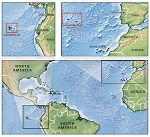 The mid ocean ridge system is the largest geologic feature on the mid ocean ridge system is the largest geologic feature on earth it is gumiabroncs Images