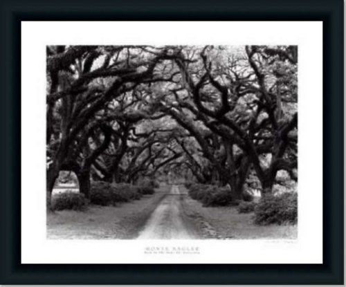 Path In The Oaks #2 Louisiana By Monte Nagler Art Print Poster ...