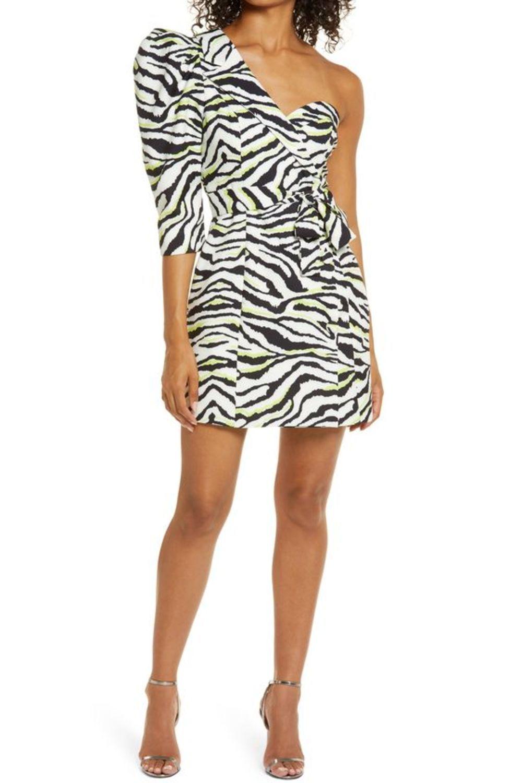 Animal Print Outfit In 2021 Zebra Print Dress Mini Dress Animal Print Outfits [ 1500 x 1000 Pixel ]