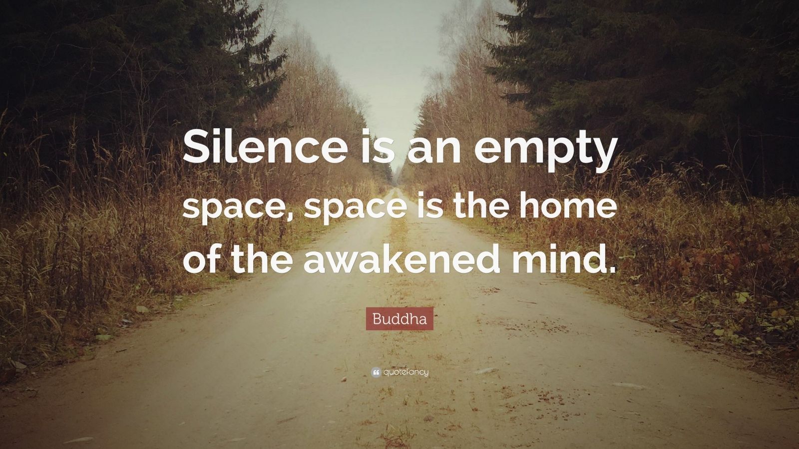 Buddha Quote Silence Is An Empty Space Space Is The Home Of The Awakened Mind Haha When You Got Ti Bonhoeffer Quotes Integrity Quotes Alan Watts Quotes