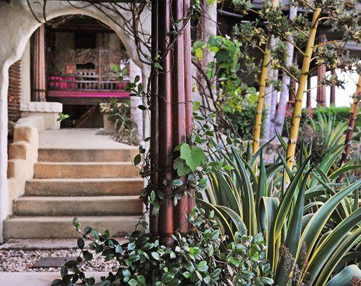 tropical garden   Tropical garden, Garden, Garden design
