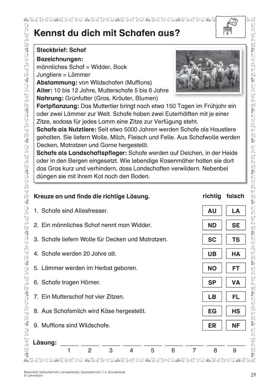 Natur und Leben · Arbeitsblätter · Grundschule · Lehrerbüro | Lernen ...