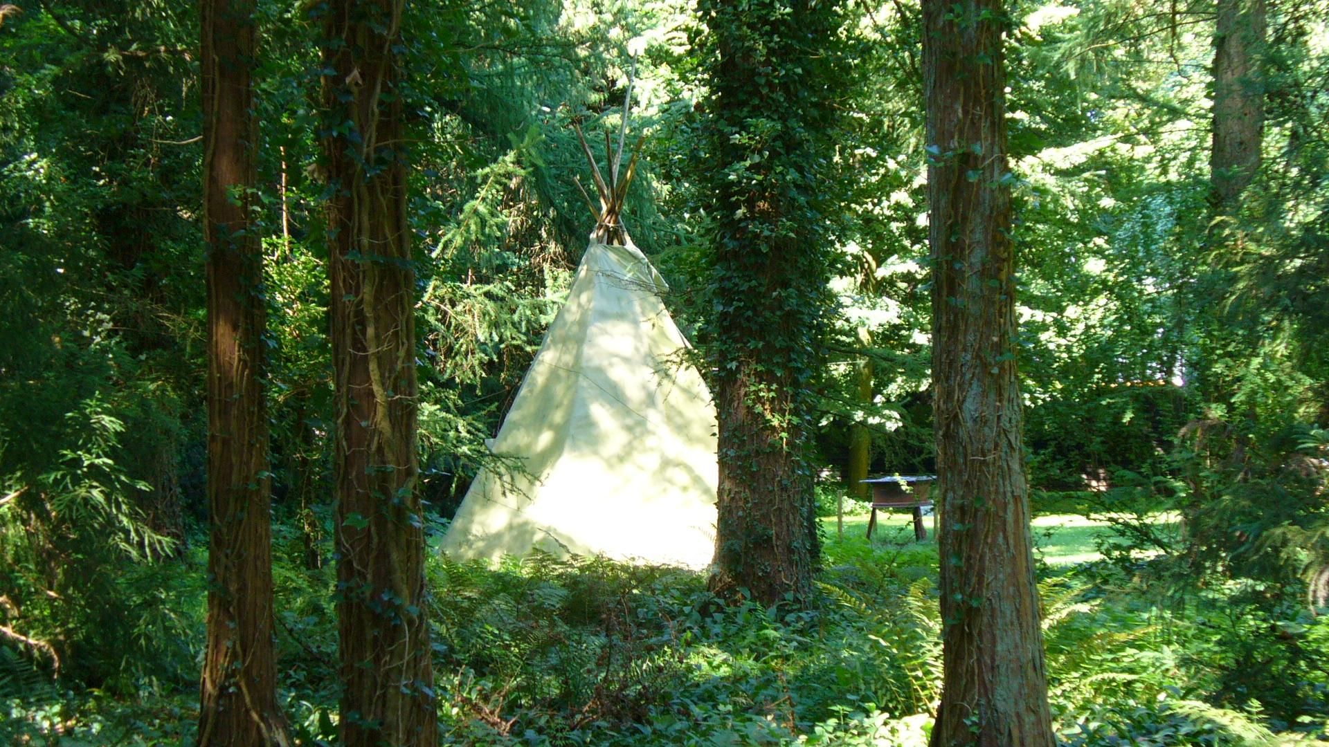 cool the forest tower tipi in the arboretum wallpaper