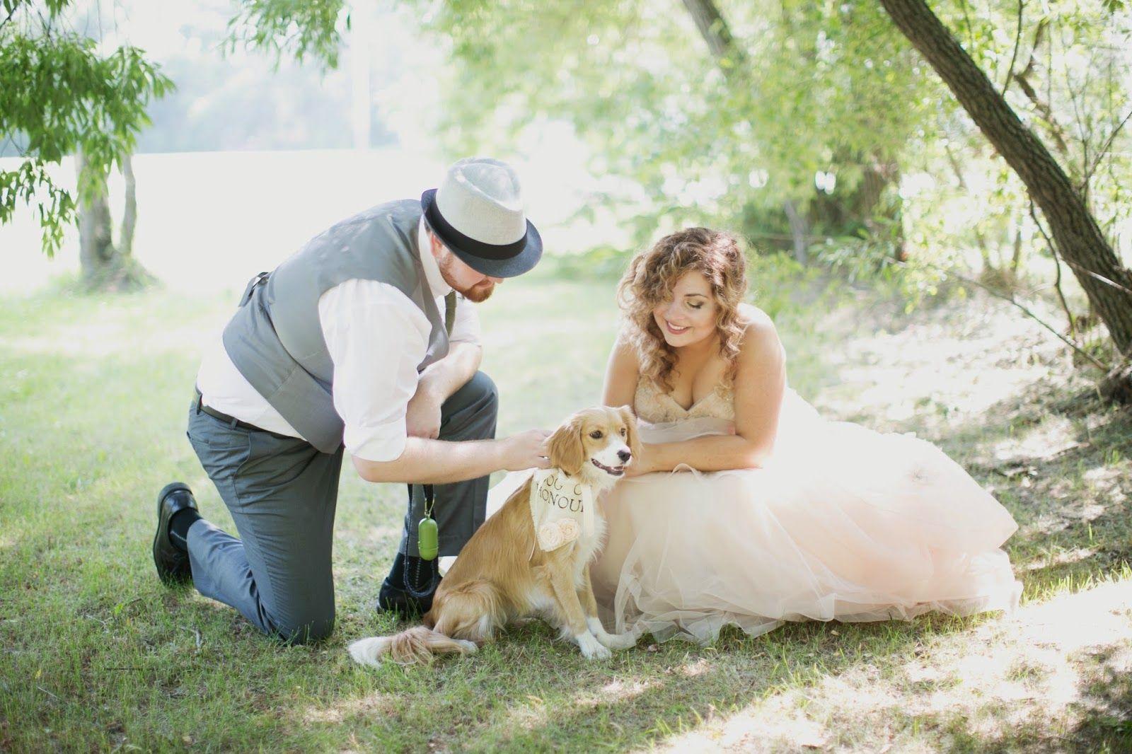 Light A Candle: Being Thankful #wedding #weddingdogs #bestdog #dogofhonour #dogofhonor