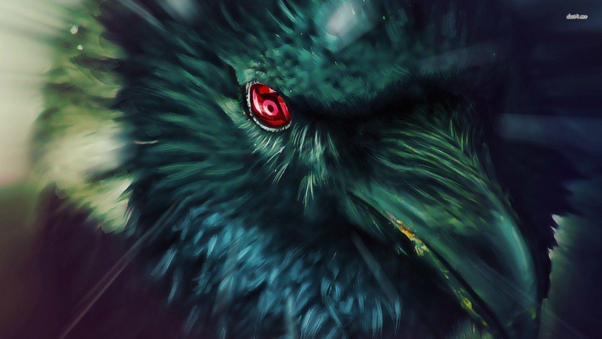 Keren 31 Burung gagak itachi terbaik