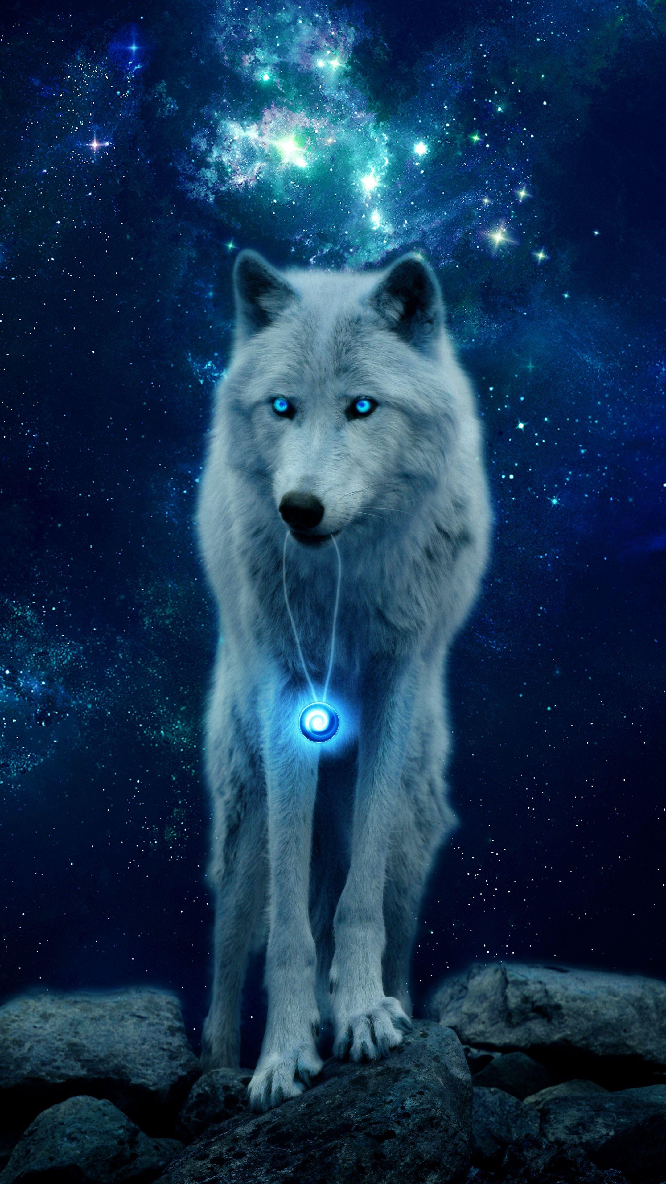 Скачать 2160x3840 волк, холм, свечение, хищник, дикая ...