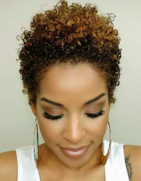 Simple Tight Curly Hairstyle For African American Women Short Natural Hair Styles Short Natural Curly Hair Natural Hair Styles