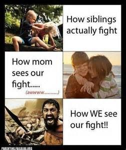 No, my mom sees us fighting almost the same way we see it. Just in modern life and plastic swords and pillows.