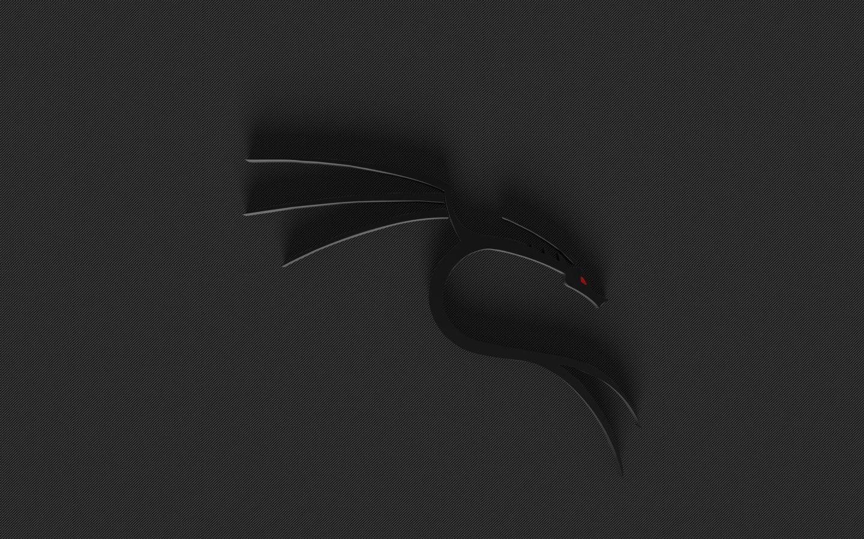 Kali Linux Hd Desktop Wallpapers Hd Desktop Snowman Wallpaper Linux