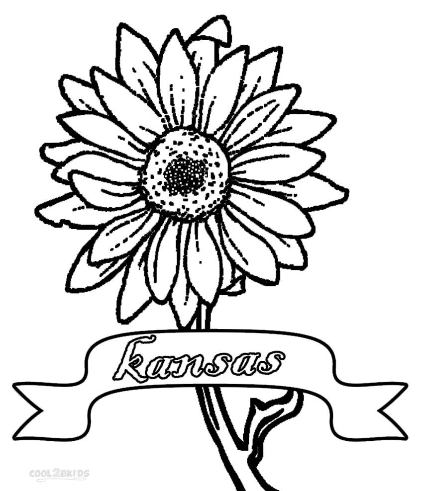 Printable Sunflower Coloring Pages For Kids | Cool2bKids | Plant and ...