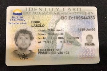 driver licence in bc canada