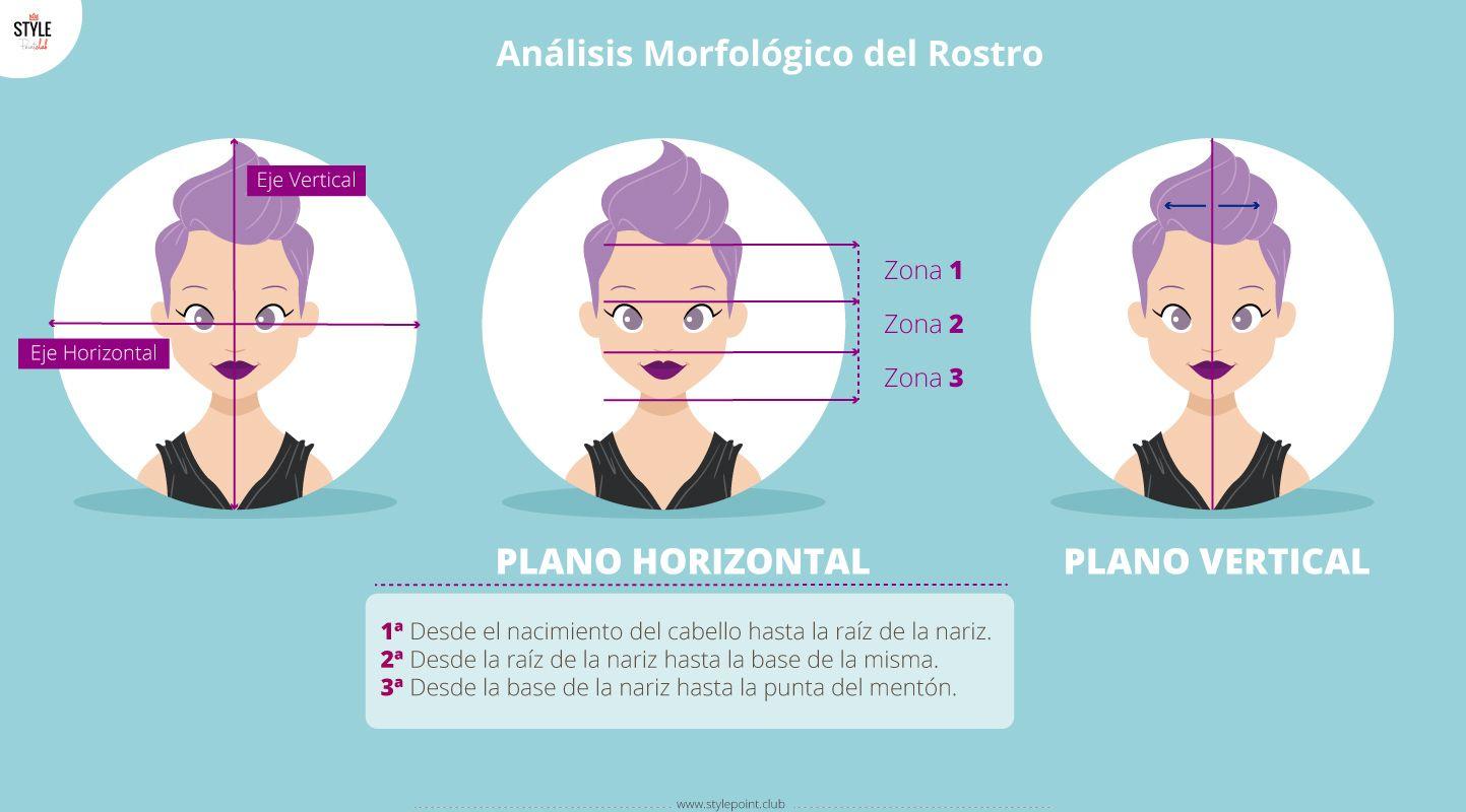 Análisis Morfológico Del Rostro Morfologia Del Rostro Tipo De Rostros Rostro Rectangular