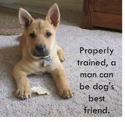 Inspiring Quotes For People Who Love Animals Dog Best Friend