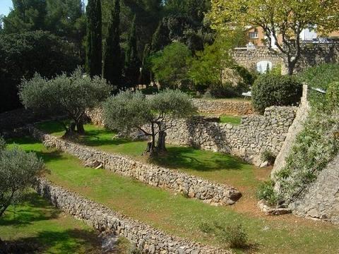 Image Result For Restanques Terrasse Jardin Jardin