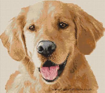 The Stitch Studio Golden Retriever Dog Cross Stitch Chart Www Crossstitchers Co Uk400 355hae Ku Cross Stitch Animals Cross Stitch Cross Stitch Embroidery