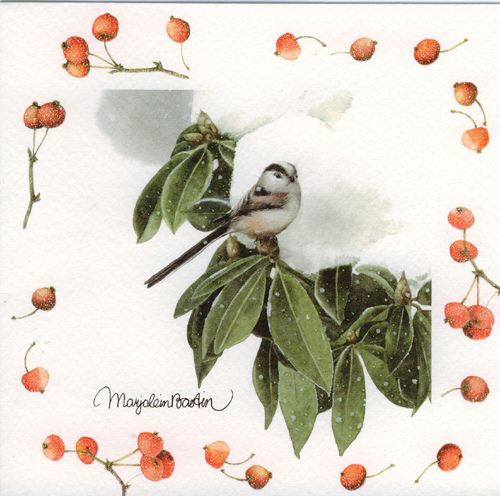 Christmas card marjolein bastin galleries and artist artist marjolein bastin publisher hallmark my parents had bought a box of this set of and gove me one of each card m4hsunfo Images