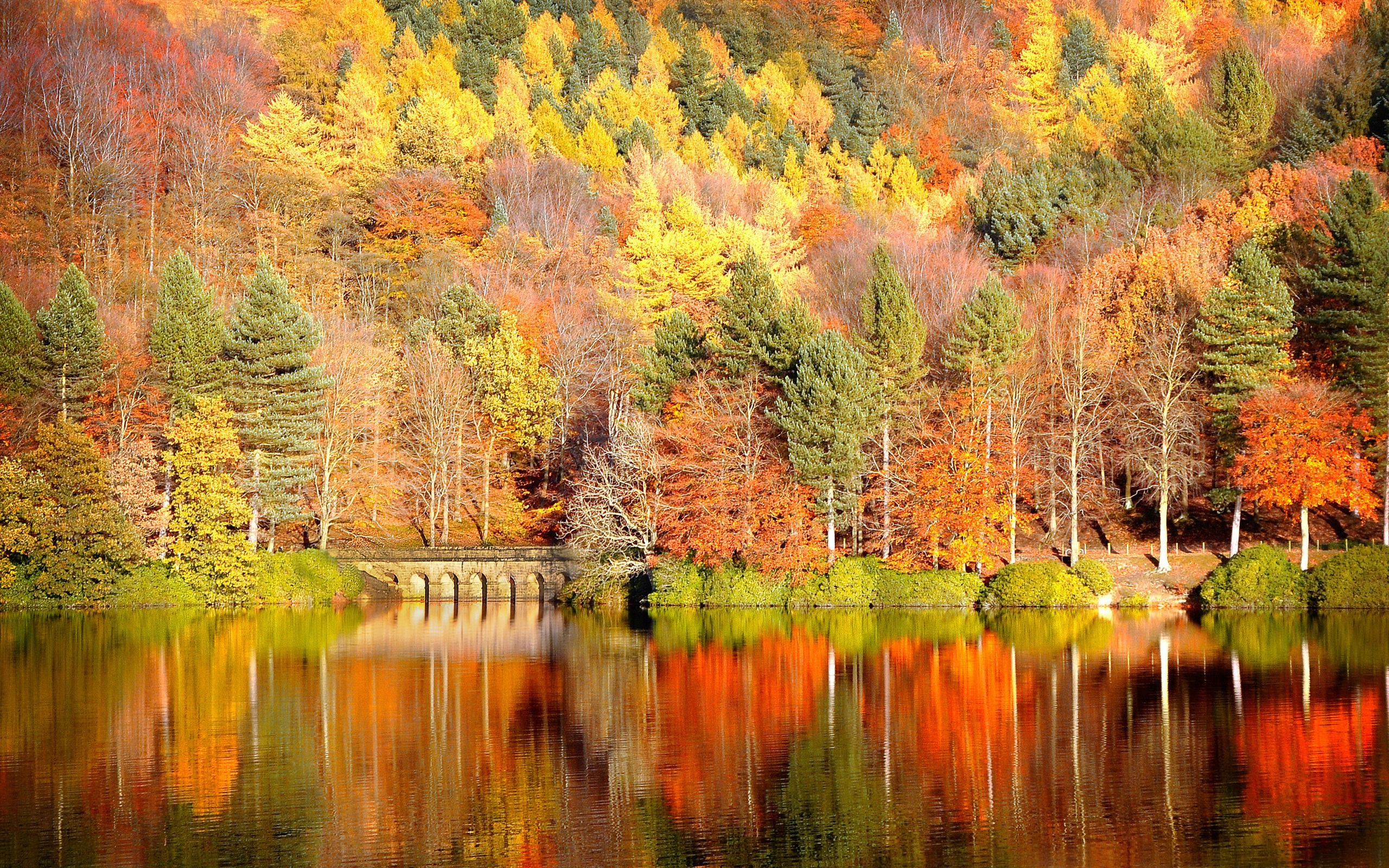 Reminds Me Of Julian Price Park Family Trips With My Boys Desktop Wallpaper Fall Autumn Landscape Scenery Wallpaper