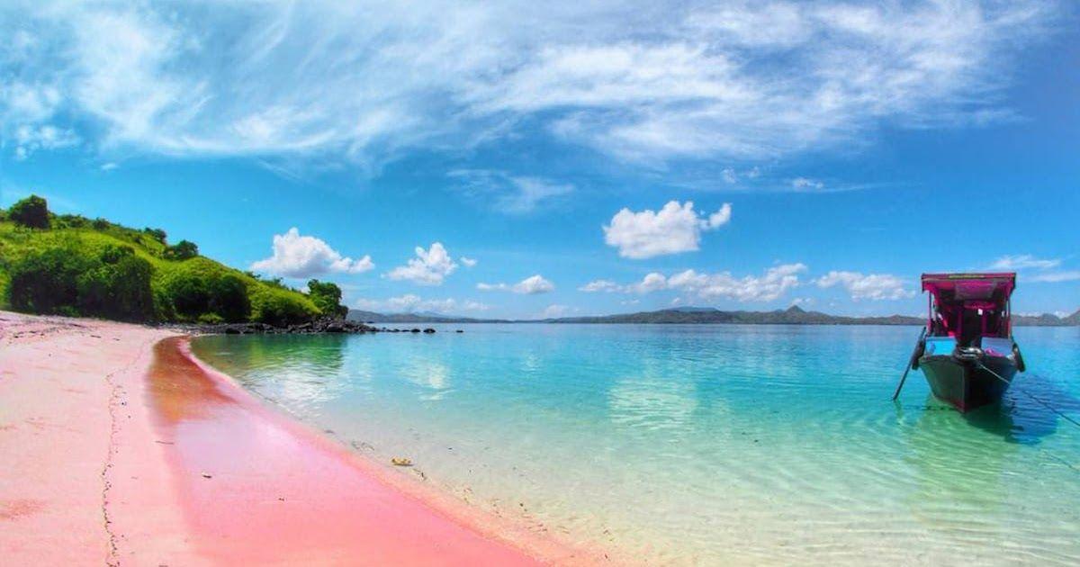 14 Wallpaper Pemandangan Warna Pink Sekali Seumur Hidup 7 Pantai Pink Di Dunia Ini Wajib Download Us 13 34 54 Off Di 2020 Pantai Pemandangan Taman Nasional Komodo