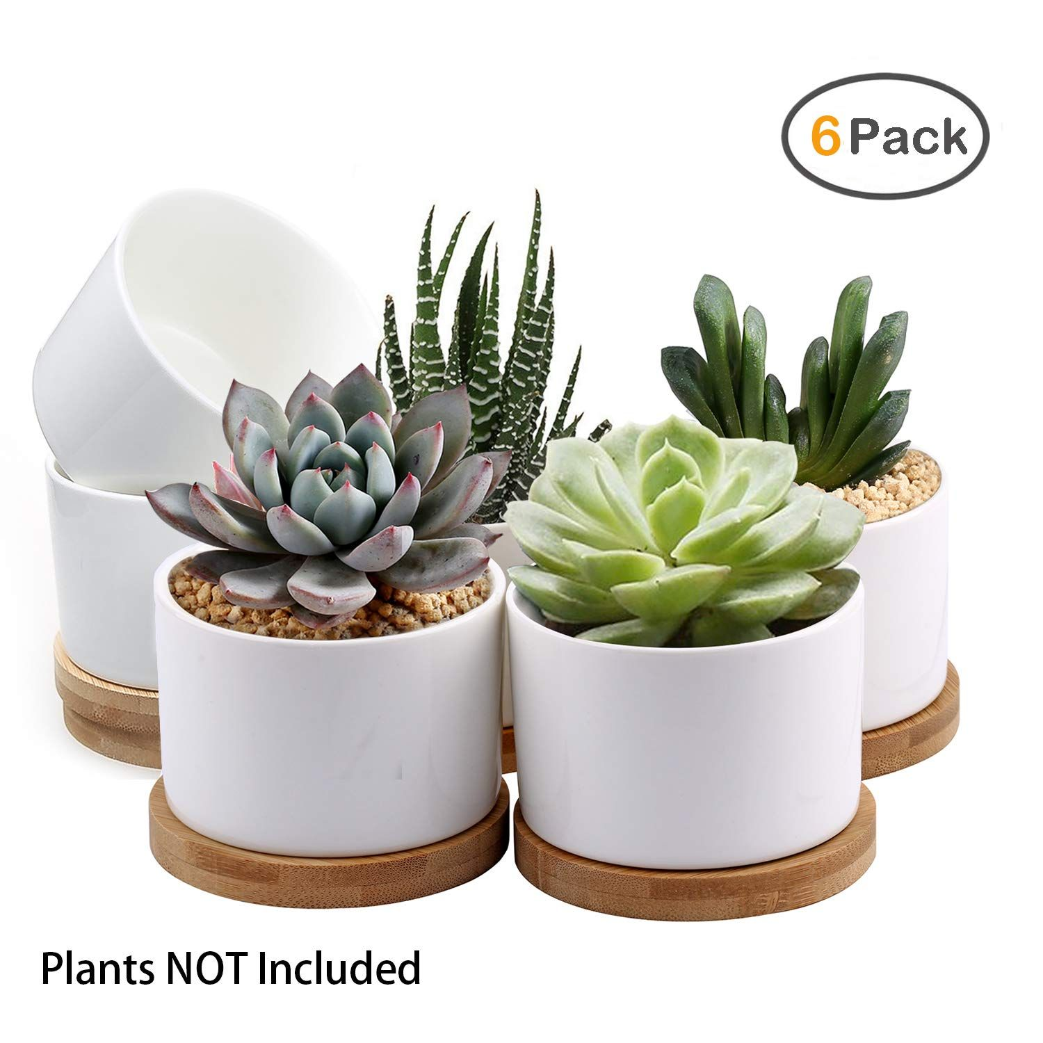 Loveboutique Ceramic Flower Plant Pot Size 4 Inch 6 Inch And 7 Inch Modern Set Of 3 Ceramic Plant Pots Indoor Plant Pots Plastic Plant Pots