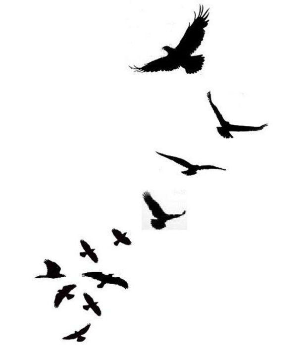 Dessin tatouage, oiseaux