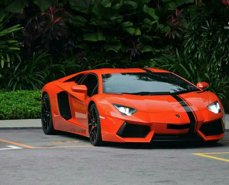 Orange Aventador With Black Strip Ferrari Vs Lamborghini Cars