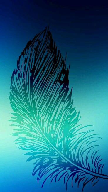 Feather Blue Wallpapers Iphone Cute Adorable Love Beautiful Amazing