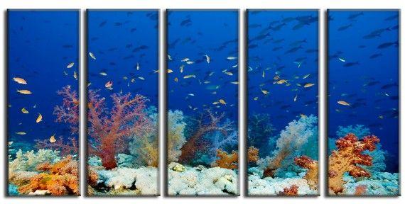 Sea Fish Nature HUGE Photo Painting Canvas Art by NatureOnCanvas, $145.00