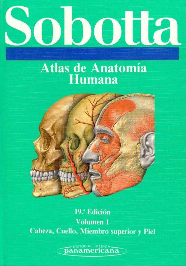 Sobotta atlas de anatomia humana volumen 1 | Libros Med 2 ...