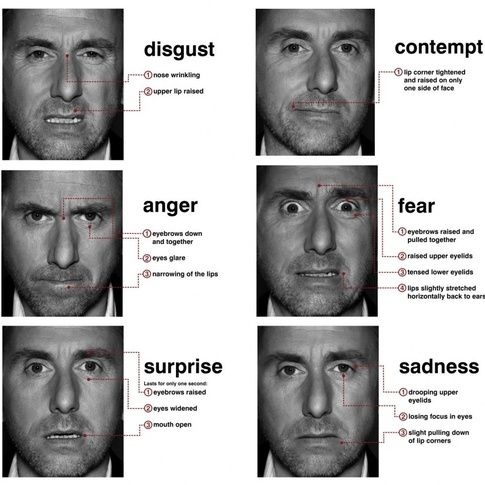 micro expression training