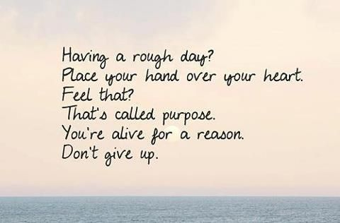 Youre Alive For A Reason Dont Give Up Quote About Youre Alive