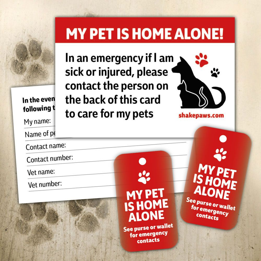 Home Alone Pet Safety Card And Fob Key Ring Set Birthday Gifts Christmas Gifts Dog Lovers Cat Lovers Pet Safety Pets Dog Lovers