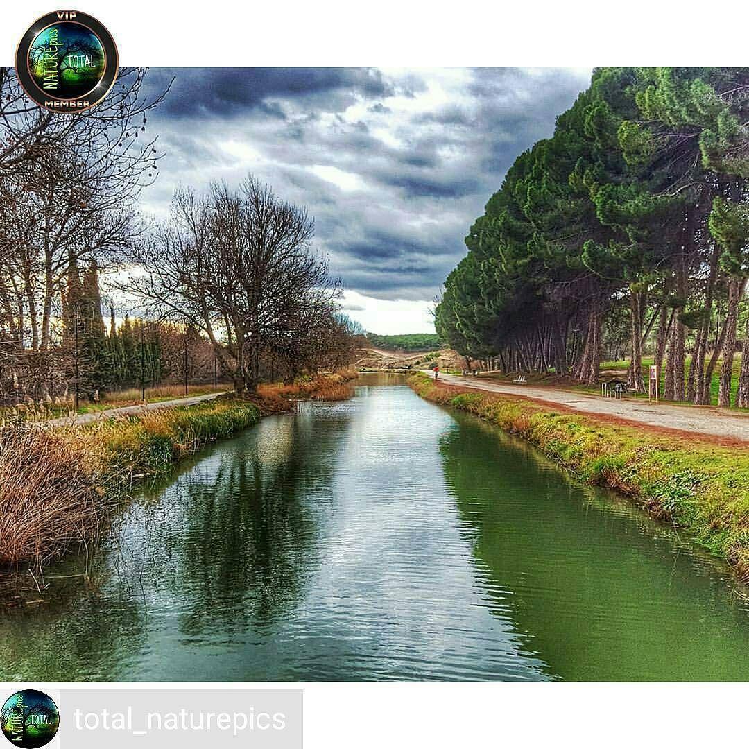 Repost de agradecimiento a @total_naturepics Y su administradora @marian_tl  por escoger mi foto para su preciosa Galería  @Regrann from @total_naturepics - . FELICIDADES CONGRATULATIONS .  @chemadieste  . Seleccionada por/ Select by: @marian_tl . Tag hub: #total_naturepics  .  Síguenos/ Follow: @total_naturepics  .  NO STOLEN PHOTOS  __________________________________  Recuerda visitar/ Remember to visit our: @total_community_hubs __________________________________  Galerías amigas…