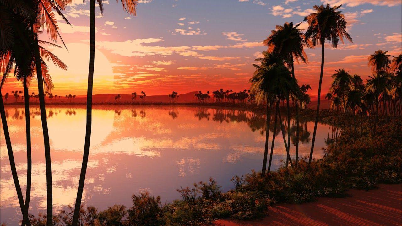 Airstream Let The Sun Go Down The Golden Port Mix Beach Sunset Wallpaper Sunset Wallpaper Beautiful Images Nature