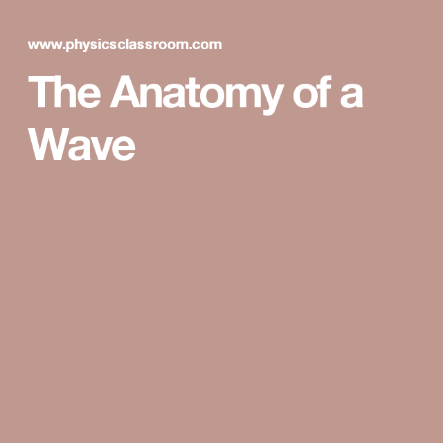 The Anatomy Of A Wave Drawing Pinterest Anatomy