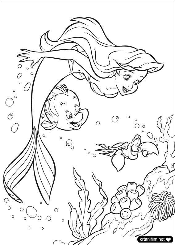 Mala Sirena Bojanke Printanje Sirene Bojanka Quoteko Com Ausmalbilder Malvorlagen Fur Madchen Ausmalbilder Disney