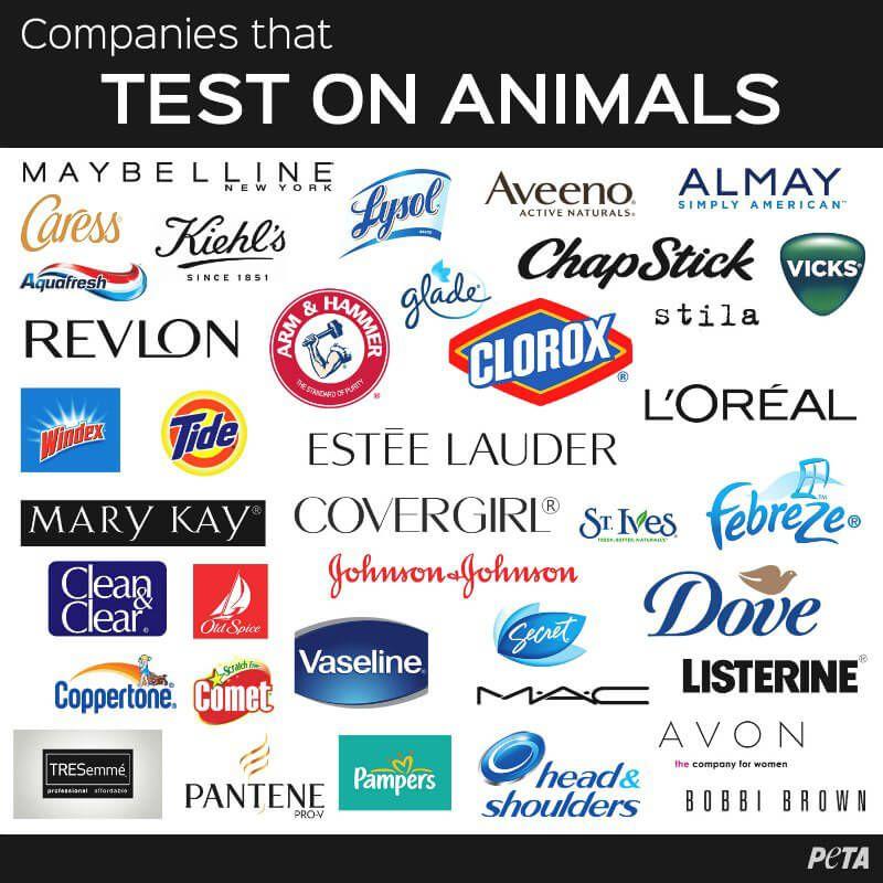 animals test companies cruelty stop still testing animal brands them household makeup skin read