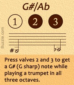 Trumpet Fingering Chart For Beginners  Trumpets And Musicians