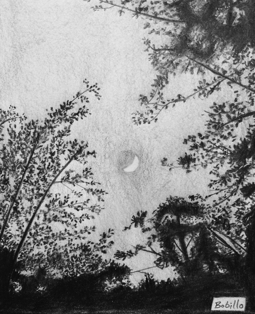 Indiana Moon.   Patrick Bobillo